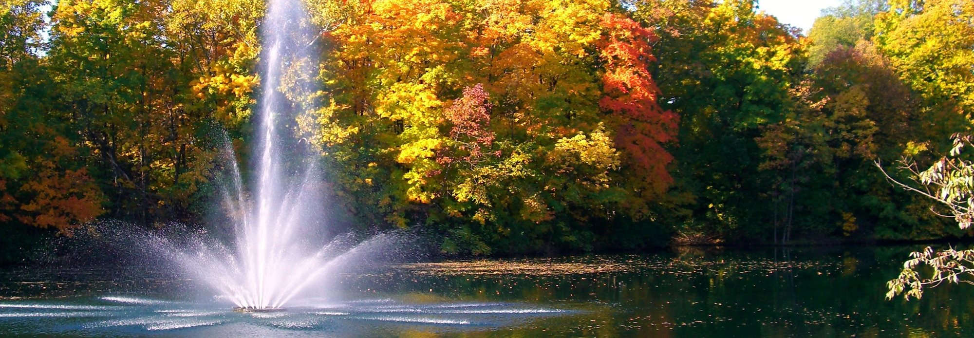 Fountain_Fall